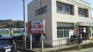 いちご狩り2 (1).JPG